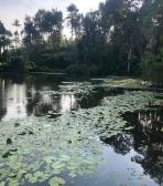 Kerala Yoga Retreat 2020
