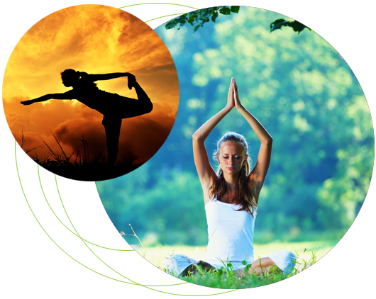 About Eco Yoga Sanctuary