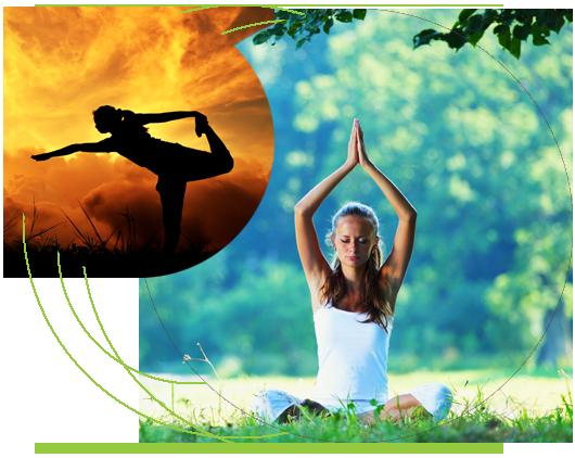 About Eco Yoga Sanctuary