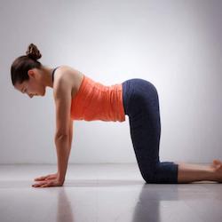Gentle Flow Yoga - Roxie