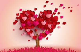 المغفرة والحب غير مشروط - كل نهاية بداية جديدة