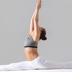 Flexibilty Yoga - Roxie
