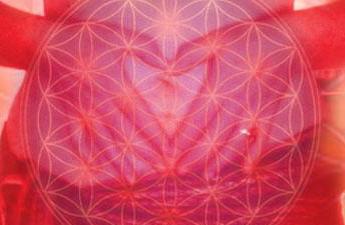 Sacred Womb Healing